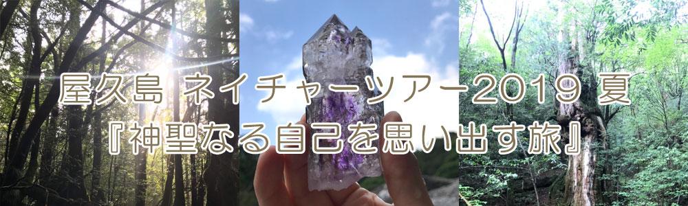 屋久島 ネイチャーツアー2019 夏『神聖なる自己を思い出す旅』